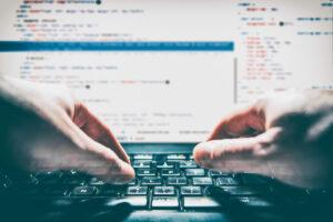 programavimas e verslas
